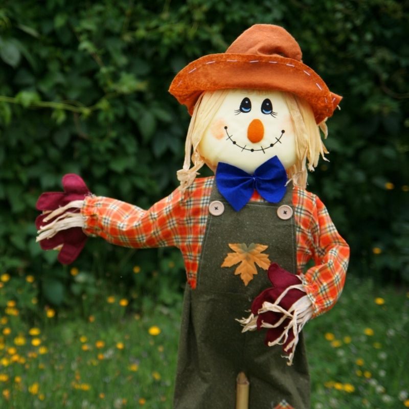 A scarecrow with an orange hat in a green field