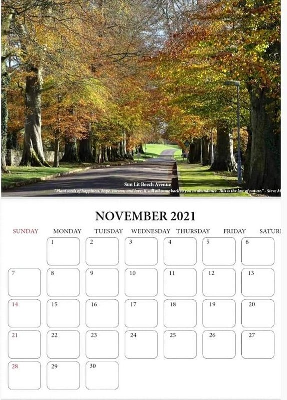 Fall trees lining an avenue on a calendar page