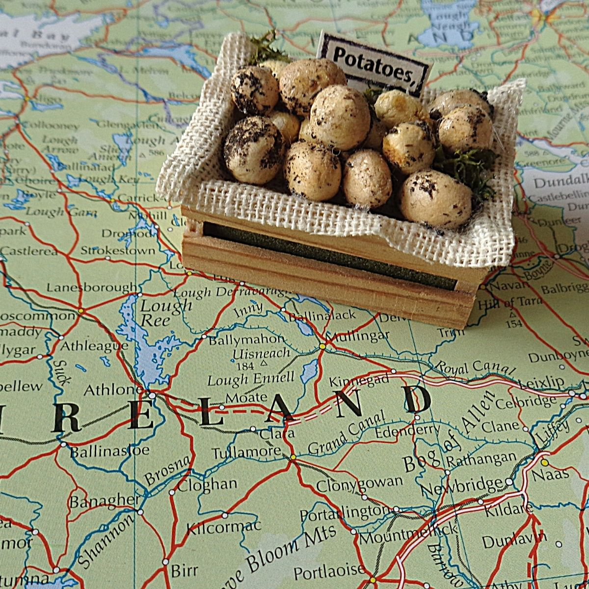 A small wooden crate of potatoes displayed on a map of Ireland