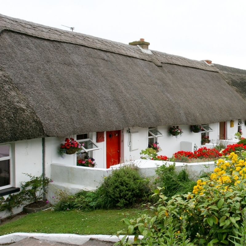 A row of thatched roof cottages with red doors and flowers in their gardens