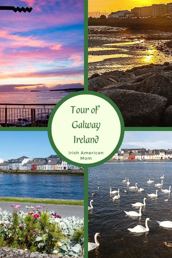 Four images of Galway city featuring swans, a body of water, and the coastline