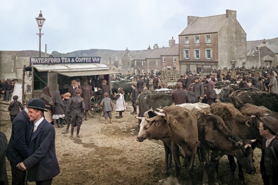 People at a cattle and horse fair vintage image