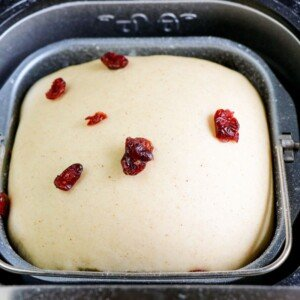 Dried fruit on bread dough in a bread machine