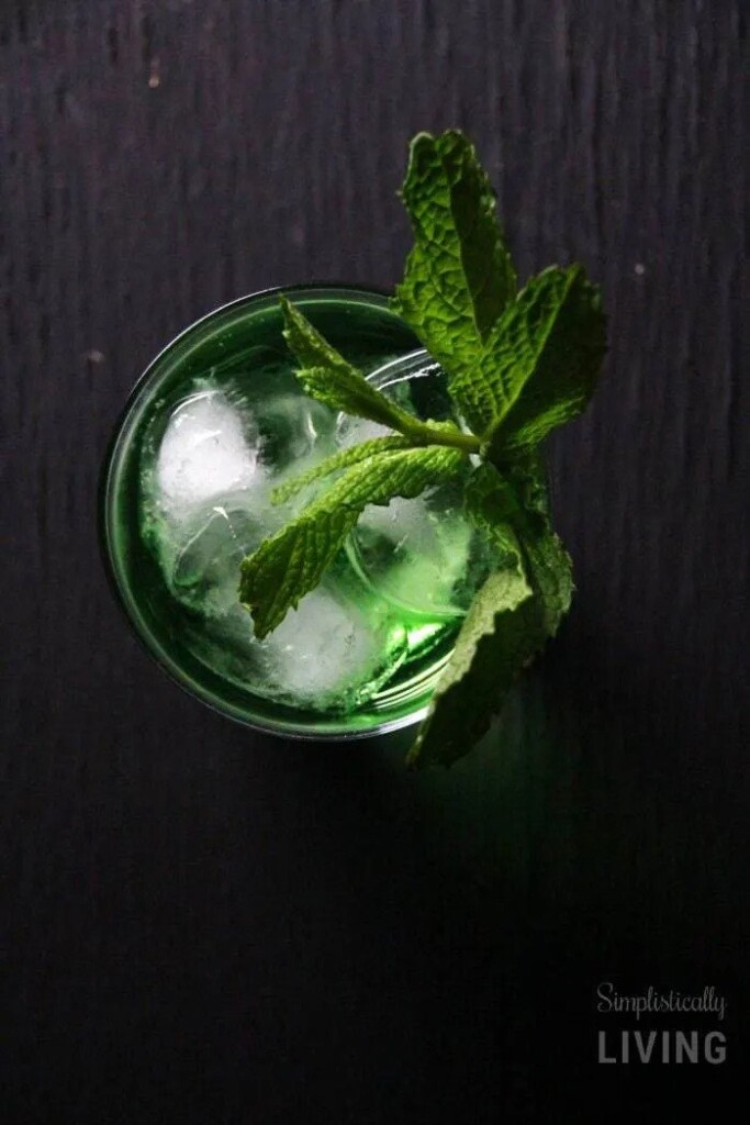 Green cocktail with mint sprigs