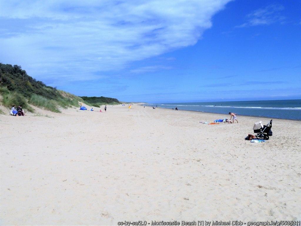 Blue skies over a sandy beach