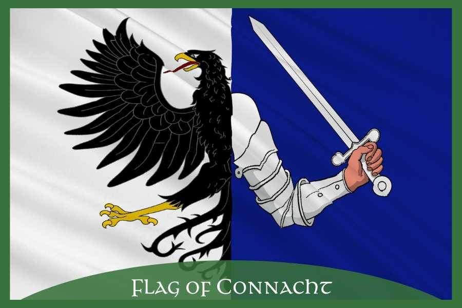 Two sided flag with half an eagle, an arm holding a sword plus text overlay