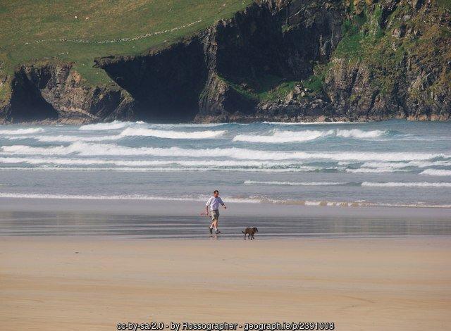 Man and dog on a beach beside cliffs