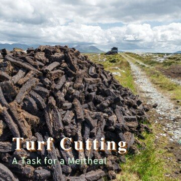 Turf stacked beside a dirt road with text overlay